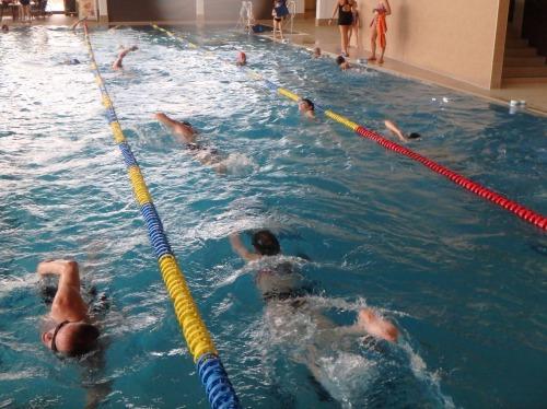 10 Technikuebungen schwimmen